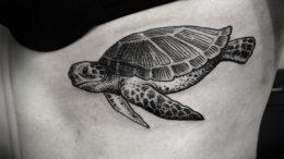 Значение татуировки «Черепаха» - фото