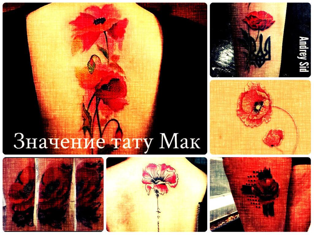 Значение тату Мак - коллекция фотографий готовых рисунков татуировки на теле