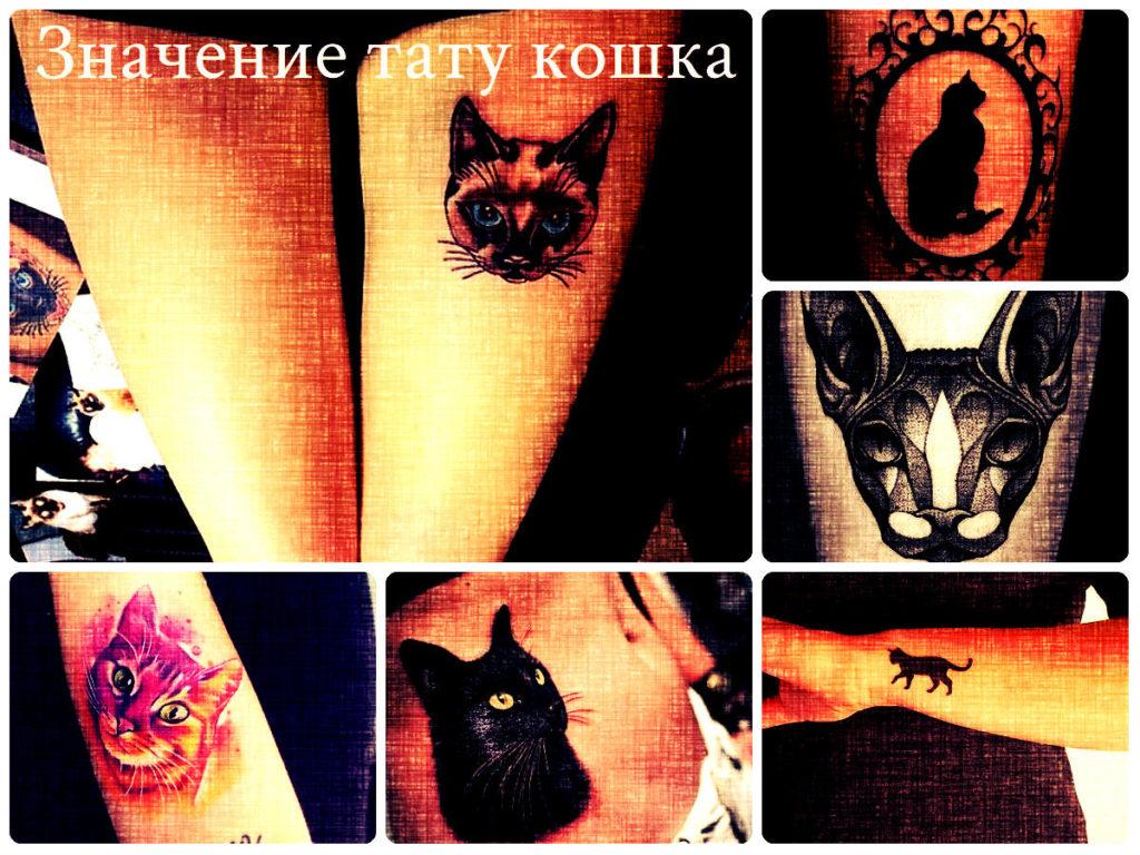 Значение тату кошка - коллекция фотографий рисунков готовых татуировок на теле