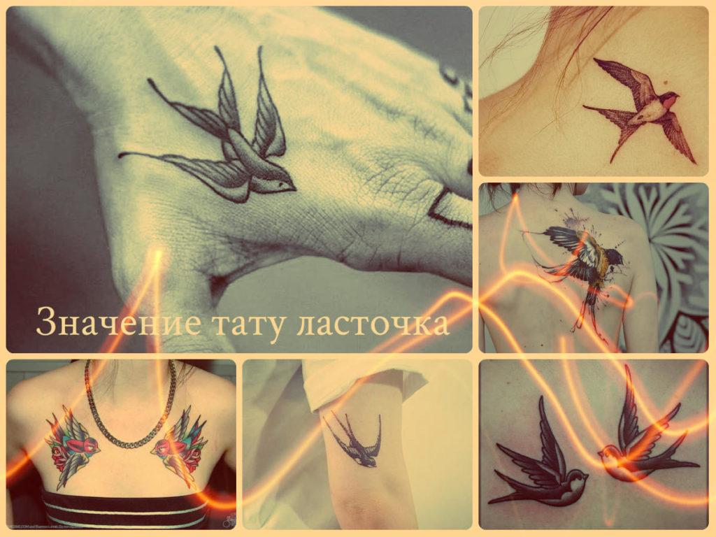 Значение тату ласточка - примеры интересных рисунков татуировки на фото