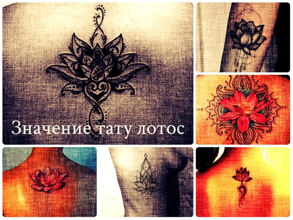 Значение тату лотос - фото примеры готовых татуировок на фото - рисунки