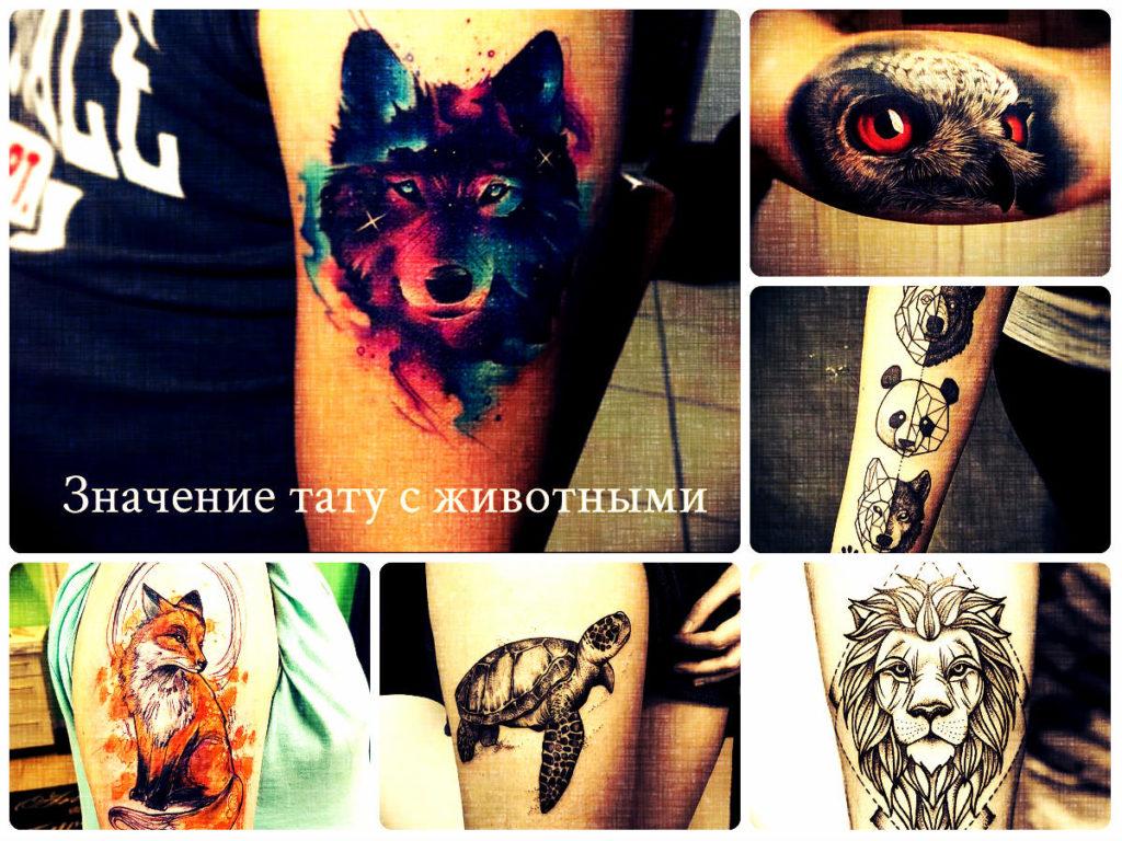 Значение тату с животными - фото примеры интересных рисунков тату