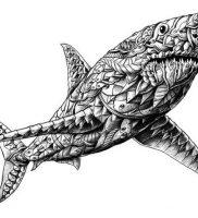 фото тату Акула от 15.11.2017 №002 — Shark Tattoo — tattoo-photo.ru