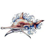 фото тату Акула от 15.11.2017 №004 — Shark Tattoo — tattoo-photo.ru