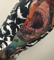 фото тату Акула от 15.11.2017 №005 — Shark Tattoo — tattoo-photo.ru