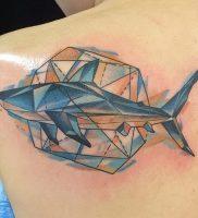 фото тату Акула от 15.11.2017 №009 — Shark Tattoo — tattoo-photo.ru