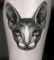 фото тату кошка от 19.11.2017 №008 — cat tattoo — tattoo-photo.ru