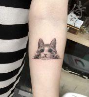 фото тату кошка от 19.11.2017 №011 — cat tattoo — tattoo-photo.ru