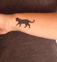 фото тату кошка от 19.11.2017 №016 — cat tattoo — tattoo-photo.ru
