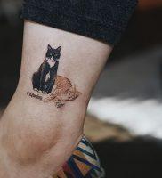 фото тату кошка от 19.11.2017 №017 — cat tattoo — tattoo-photo.ru
