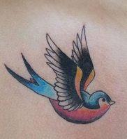 фото тату ласточка от 18.11.2017 №003 — tattoo swallow — tattoo-photo.ru