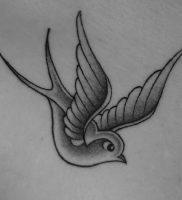 фото тату ласточка от 18.11.2017 №011 — tattoo swallow — tattoo-photo.ru