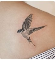 фото тату ласточка от 18.11.2017 №015 — tattoo swallow — tattoo-photo.ru
