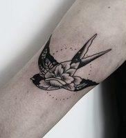 фото тату ласточка от 18.11.2017 №015 — tattoo swallow — tattoo-photo.ru 2352342