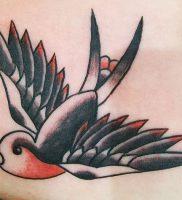 фото тату ласточка от 18.11.2017 №100 — tattoo swallow — tattoo-photo.ru