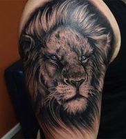 фото тату лев от 18.11.2017 №011 — tattoo lion — tattoo-photo.ru