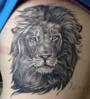 фото тату лев от 18.11.2017 №017 — tattoo lion — tattoo-photo.ru