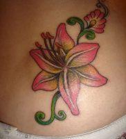 фото тату лилия от 19.11.2017 №003 — tattoo lily — tattoo-photo.ru
