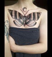 фото тату мотылек от 17.11.2017 №112 — moth tattoos — tattoo-photo.ru