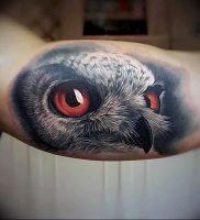фото тату с животными от 14.11.2017 №002 — animal tattoos — tattoo-photo.ru