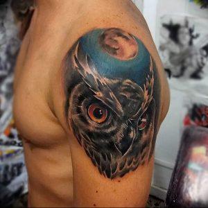фото тату с животными от 14.11.2017 №063 - animal tattoos - tattoo-photo.ru