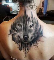 фото тату с животными от 14.11.2017 №064 — animal tattoos — tattoo-photo.ru