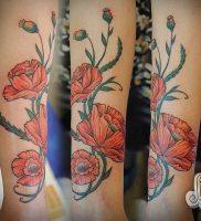 фото тату цветок Мак от 17.11.2017 №002 — tattoo flower mack — tattoo-photo.ru