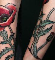 фото тату цветок Мак от 17.11.2017 №002 — tattoo flower mack — tattoo-photo.ru 1340123
