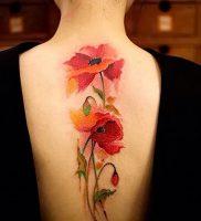 фото тату цветок Мак от 17.11.2017 №010 — tattoo flower mack — tattoo-photo.ru
