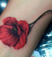 фото тату цветок Мак от 17.11.2017 №090 — tattoo flower mack — tattoo-photo.ru