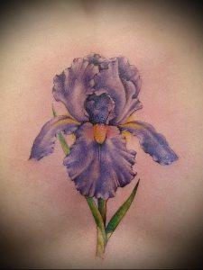 интересный вариант тату ирис на фото для статьи про значение - tatufoto.ru - 17