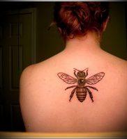 фото тату пчела для статьи про значение татуировки пчела — 11