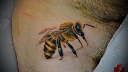 фото тату пчела для статьи про значение татуировки пчела - 26