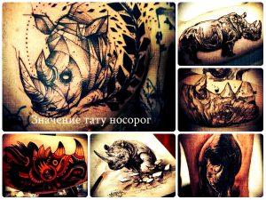 Значение тату носорог - прикольные рисунки на фото готовых татуировок - варианты