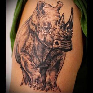 фото тату носорог (rhino tattoo) (значение) - пример рисунка - 002 tatufoto.com
