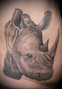 фото тату носорог (rhino tattoo) (значение) - пример рисунка - 007 tatufoto.com