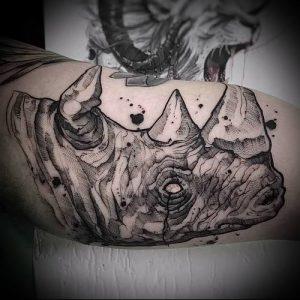 фото тату носорог (rhino tattoo) (значение) - пример рисунка - 012 tatufoto.com