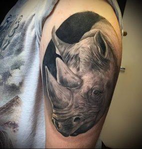 фото тату носорог (rhino tattoo) (значение) - пример рисунка - 013 tatufoto.com