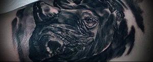 фото тату носорог (rhino tattoo) (значение) - пример рисунка - 014 tatufoto.com
