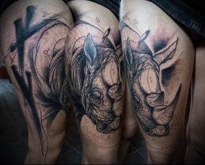 фото тату носорог (rhino tattoo) (значение) - пример рисунка - 015 tatufoto.com