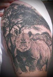 фото тату носорог (rhino tattoo) (значение) - пример рисунка - 016 tatufoto.com
