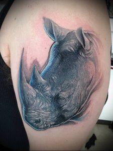 фото тату носорог (rhino tattoo) (значение) - пример рисунка - 018 tatufoto.com