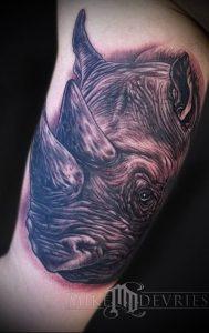 фото тату носорог (rhino tattoo) (значение) - пример рисунка - 020 tatufoto.com
