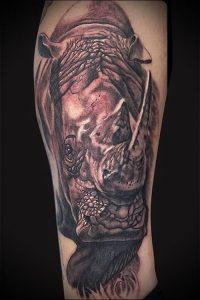 фото тату носорог (rhino tattoo) (значение) - пример рисунка - 023 tatufoto.com