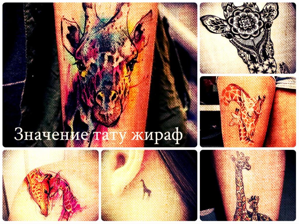 Значение тату жираф - фото примеры крутых рисунков