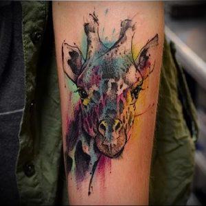 фото тату ЖИРАФ (Tattoo giraffe) (значение) - пример рисунка - 002 tatufoto.com