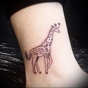 фото тату ЖИРАФ (Tattoo giraffe) (значение) - пример рисунка - 015 tatufoto.com