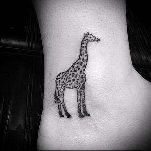фото тату ЖИРАФ (Tattoo giraffe) (значение) - пример рисунка - 016 tatufoto.com
