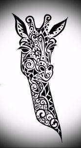 фото тату ЖИРАФ (Tattoo giraffe) (значение) - пример рисунка - 019 tatufoto.com