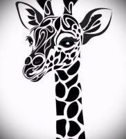 фото тату ЖИРАФ (Tattoo giraffe) (значение) — пример рисунка — 038 tatufoto.com